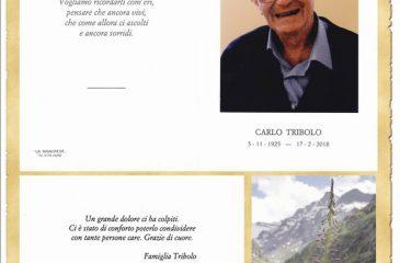 Ricordino Carlo Tribolo